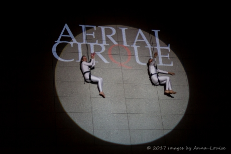 Vertical dance with Aerial Cirque - Dublin Culture Night 2017